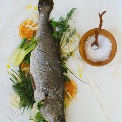 Kob Stuffed With Fennel & Orange recipe