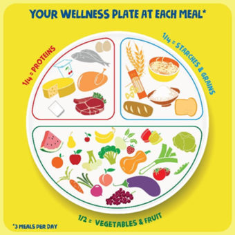 wellness food plate